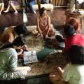 Why Vegan? Volunteer Workshop