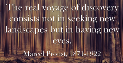 Marcel_Proust__Discovery