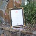 confetti and certificate
