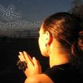ziggy manipulations - Nov 2006 02